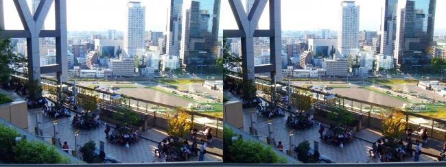 大阪ステーションシティ 和らぎの庭2017.10.8(交差法)
