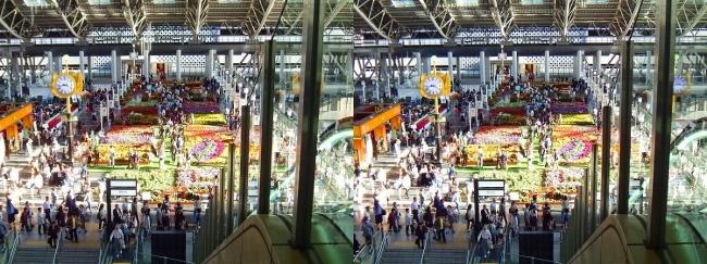 大阪ステーションシティ 時空の広場2017.10.8⑮(平行法)