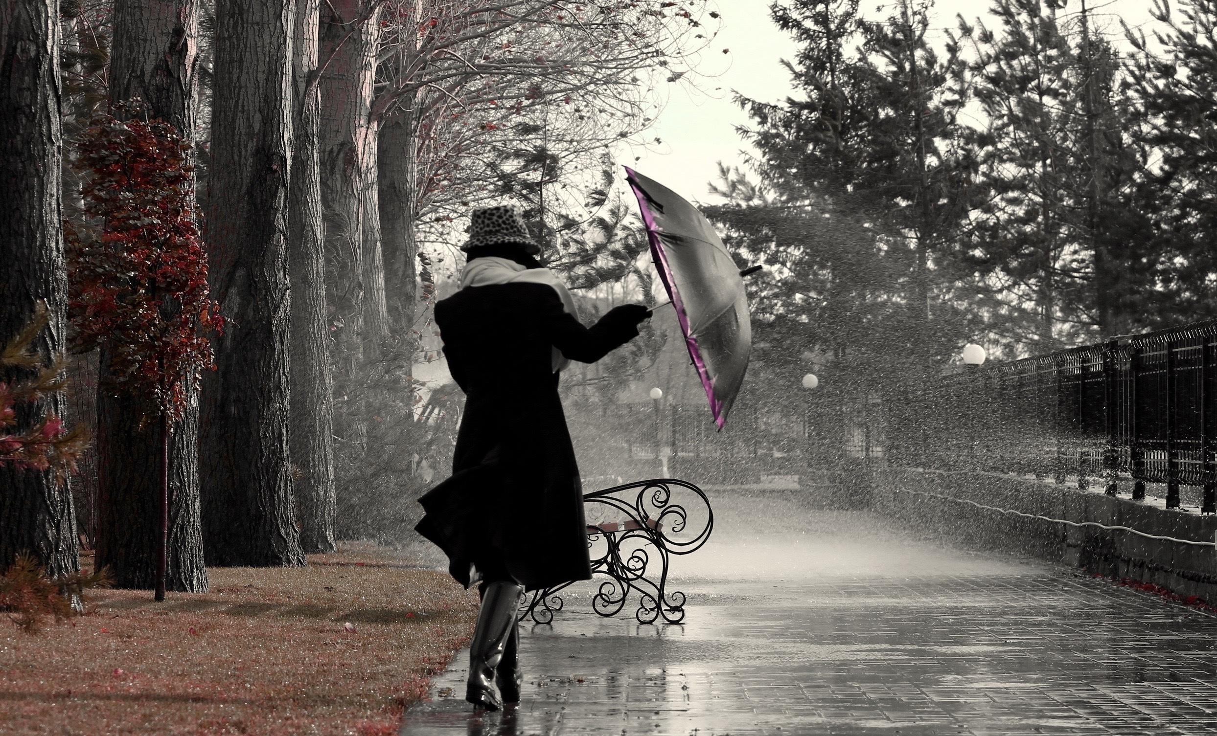 music_rainy_jam1.jpg