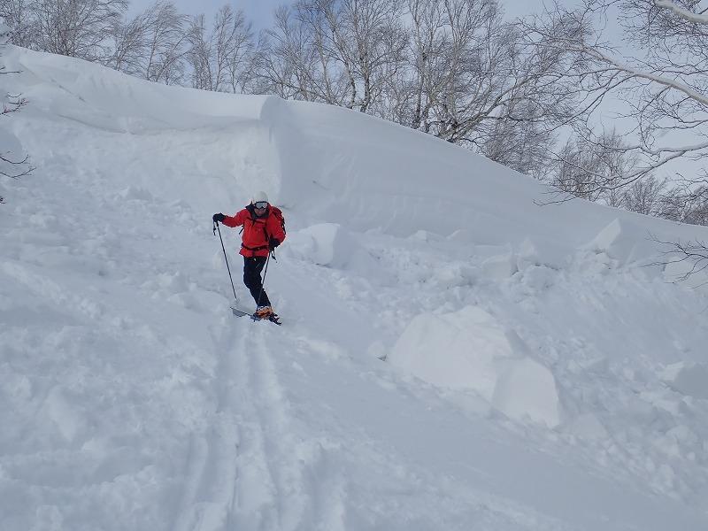 音江山雪庇