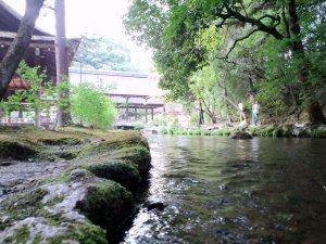 05 300 上賀茂神社