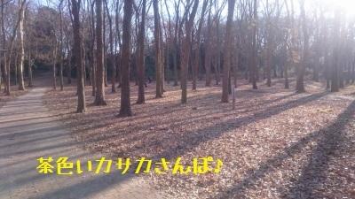 10DSC_0609.jpg