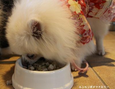 瑠妃 ポークキャベツ実食