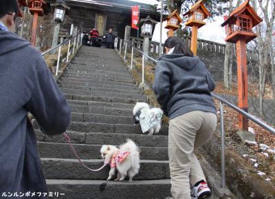 熊野皇大神社 階段のぼるよ