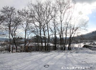 雪 空き地