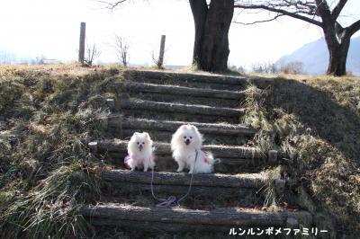 三角公園 階段