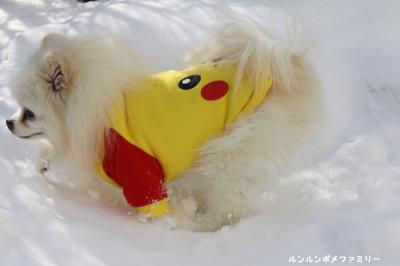 利温 雪で遊ぶ