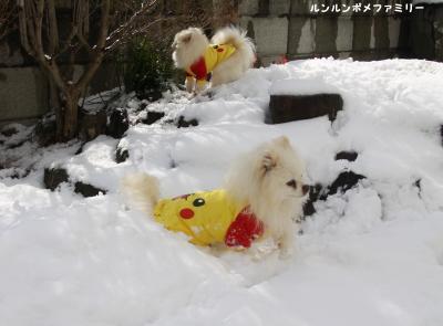 雪山2ショット②
