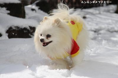 利温 雪かけっこ