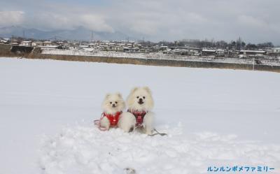 雪の大石グラウンド