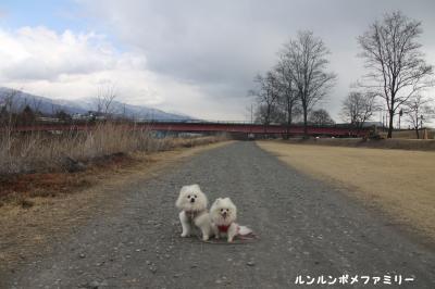 千曲川沿いの道