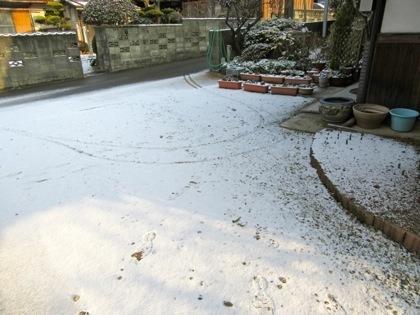 積もった雪です