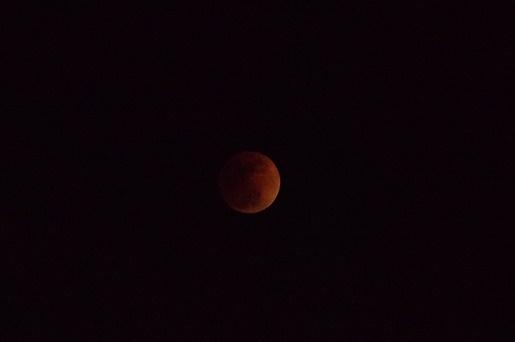 180131皆既月食1
