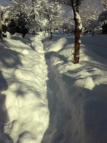 大雪180114-3