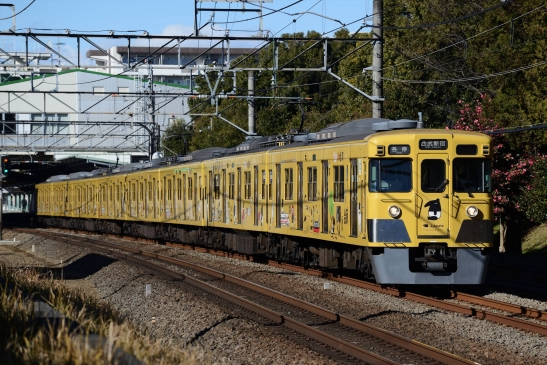 DSC_6938.jpg