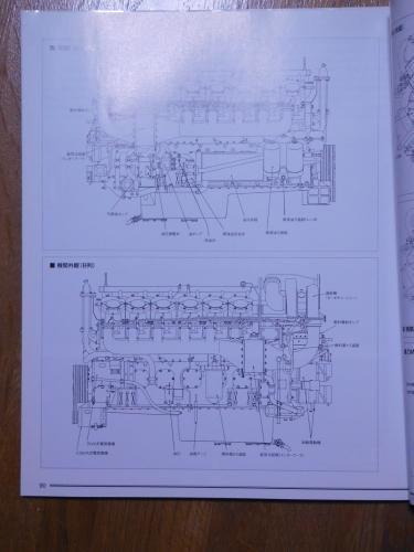 DSCN9384.jpg