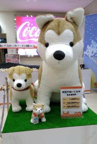 秋田犬20180100001