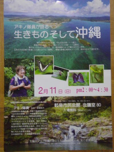 生き物そして沖縄