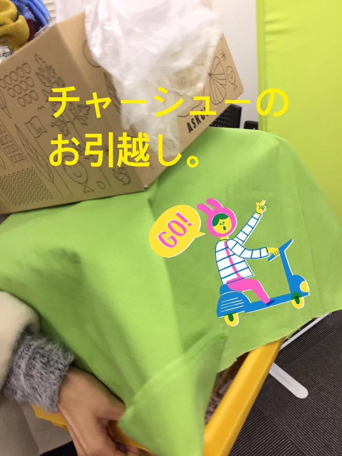 S__15581196.jpg