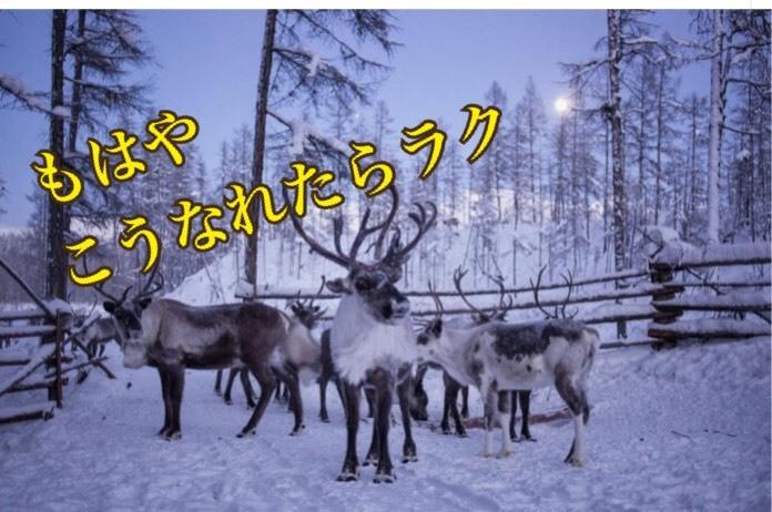 S__37937156.jpg