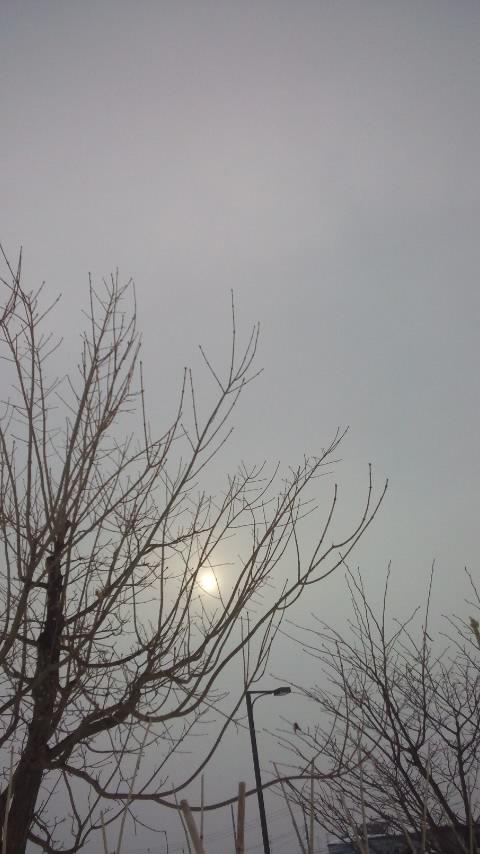 moblog_15f15448.jpg