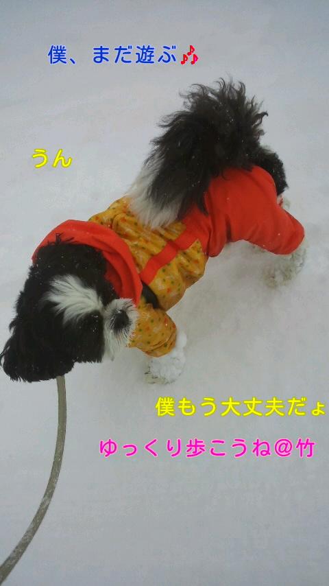 moblog_2709b0d8.jpg