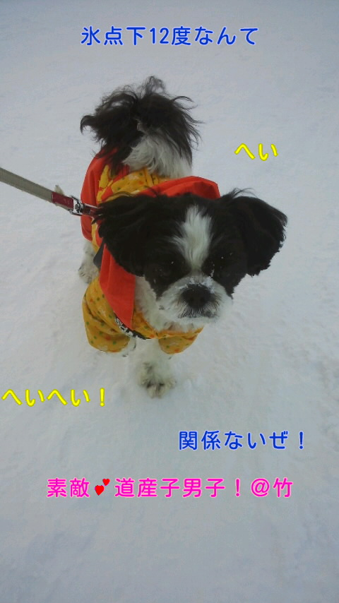 moblog_e0b93895.jpg