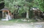 湯泉神社08