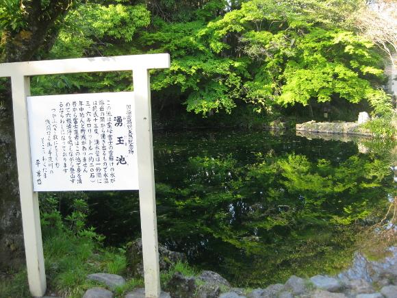 水屋神社-湧玉池02