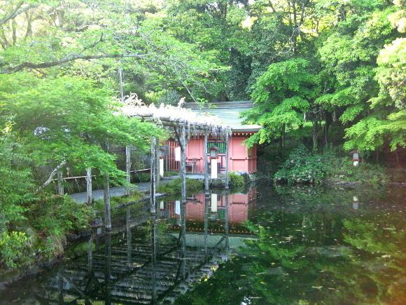 水屋神社-湧玉池03