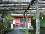 水屋神社-湧玉池05