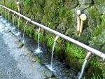 水屋神社-湧玉池10