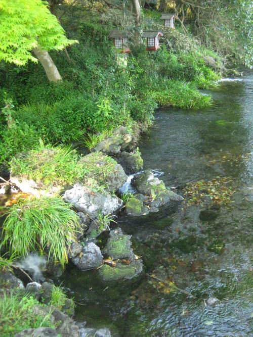 水屋神社-湧玉池15