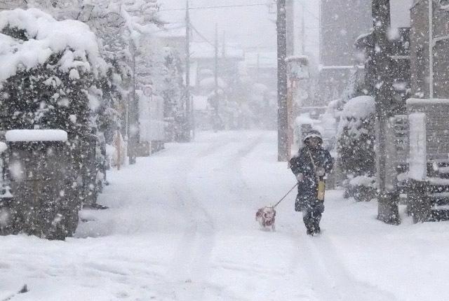 6064 降りしきる雪 640×430