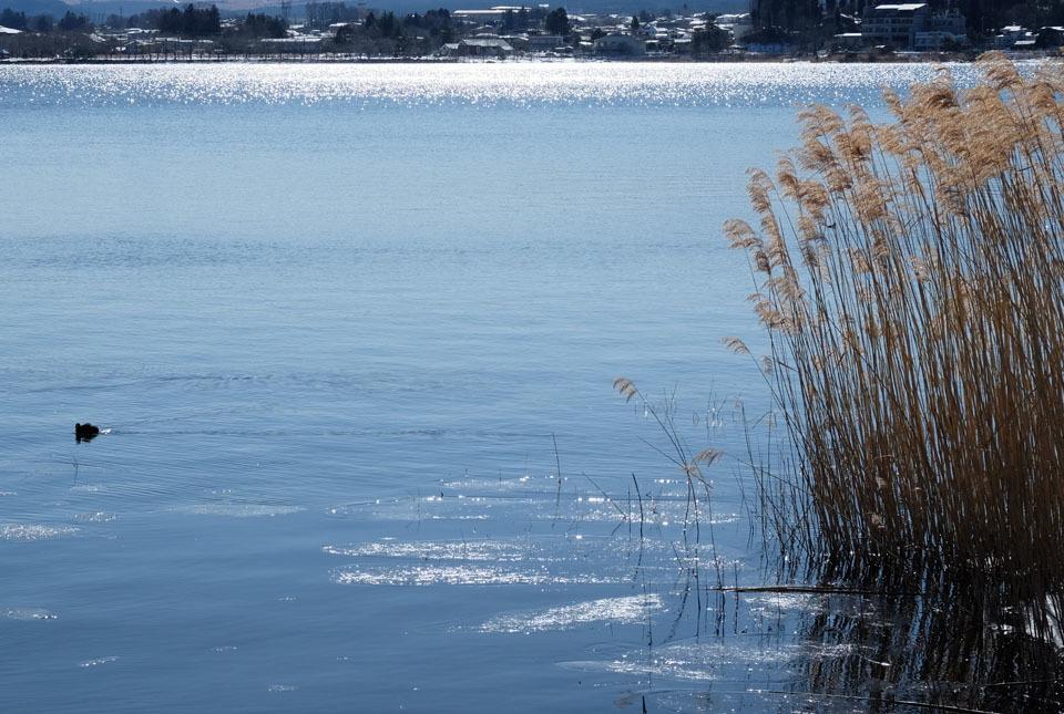 0588 河口湖 960×645