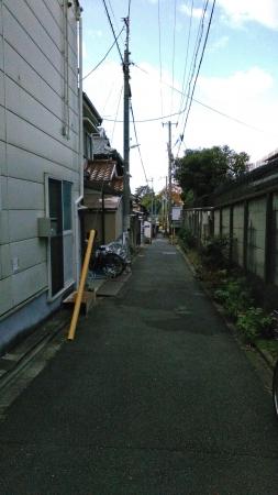 突き当りが豊国神社の小路