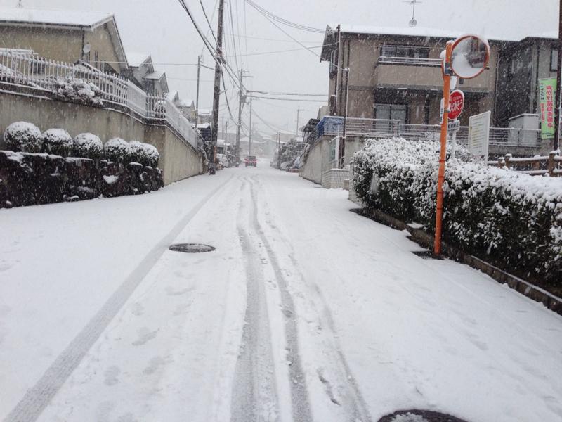 ooyuki6.jpg