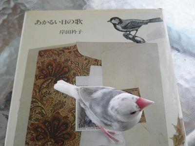 akaruihi201104.jpg