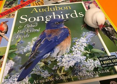 songbirds2016.jpg