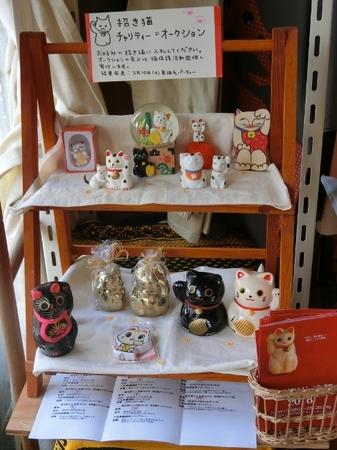 猫毛祭りin京都2018_9☆