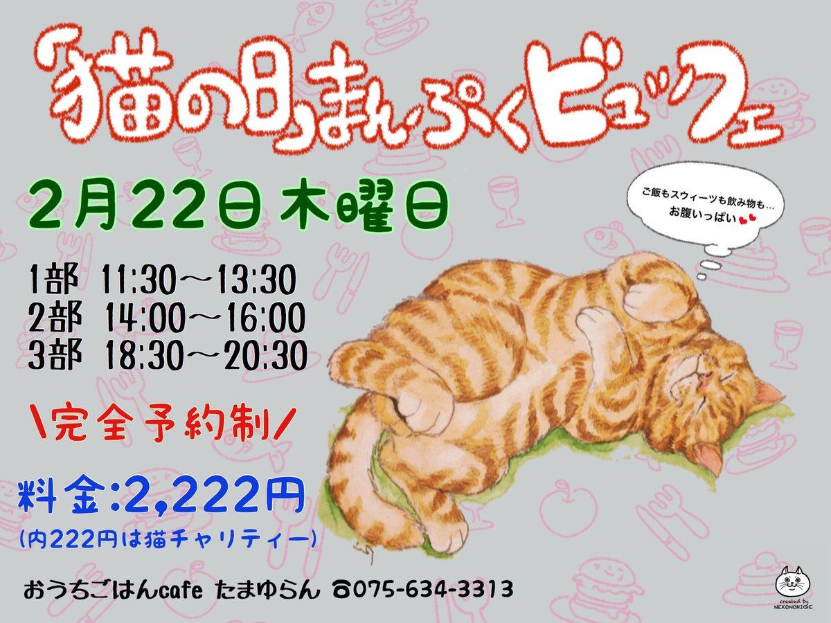 猫の日まんぷくビュッフェ2018☆