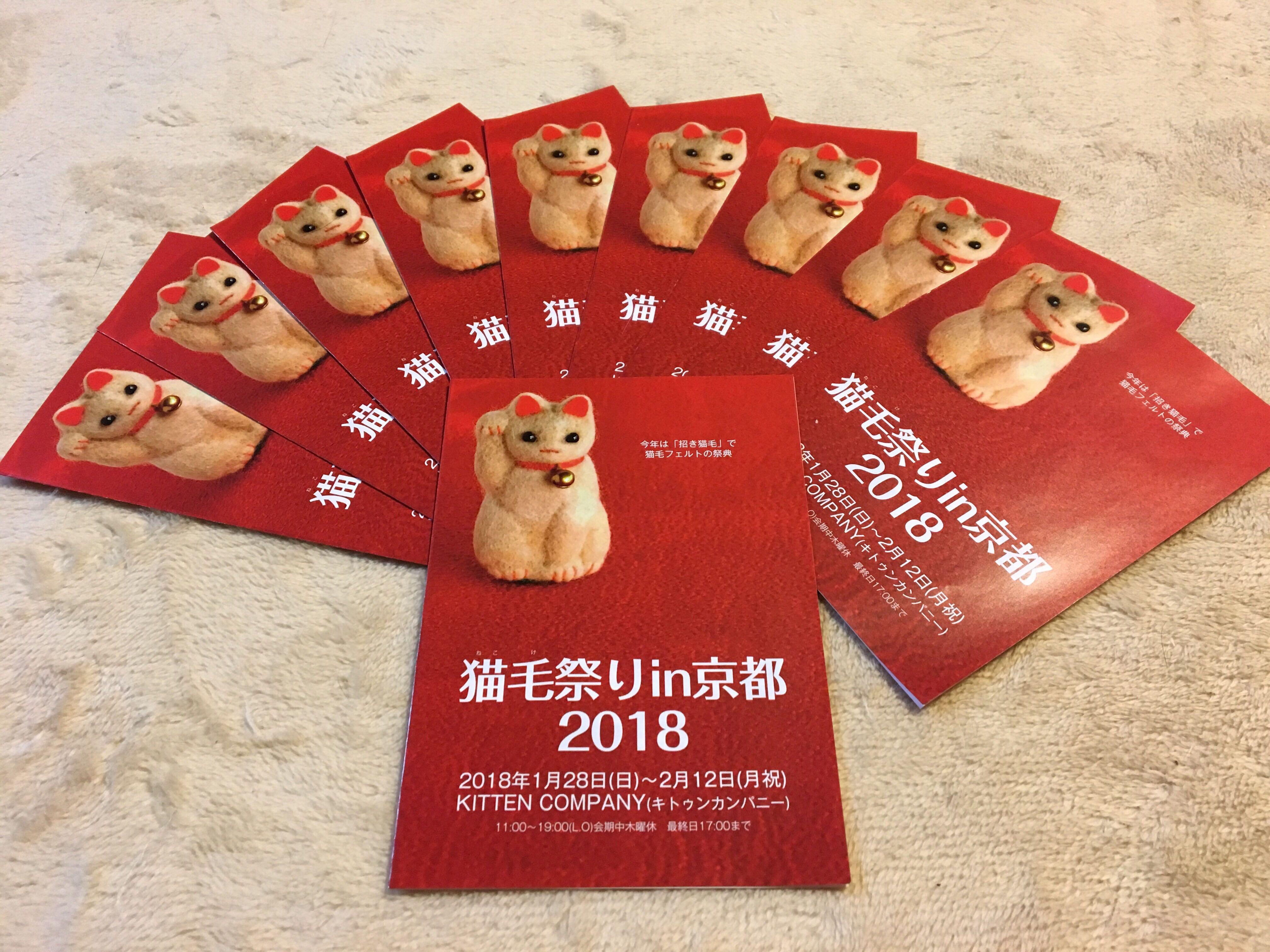 猫毛祭りin京都2018_3☆
