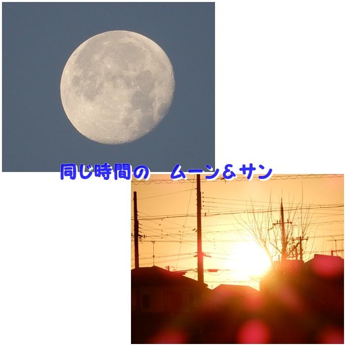 まる300105C