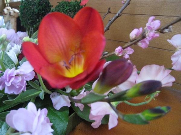 h29,12大晦日の花
