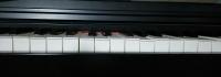 波打つ鍵盤