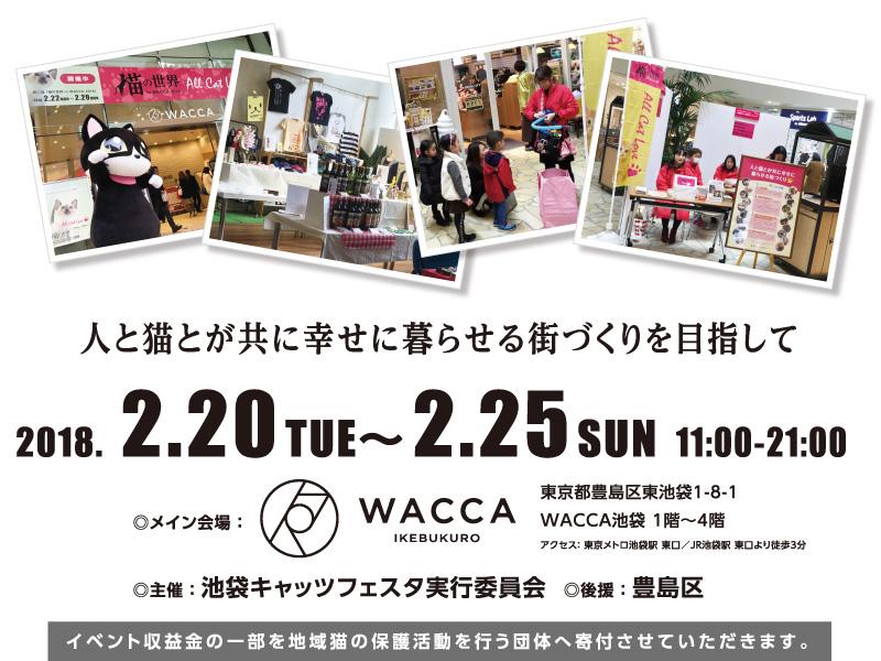 wacca_.jpg