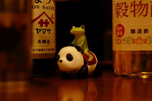 ツバキアキラが撮ったカエルのコポー。バーミヤンで中華大冒険。