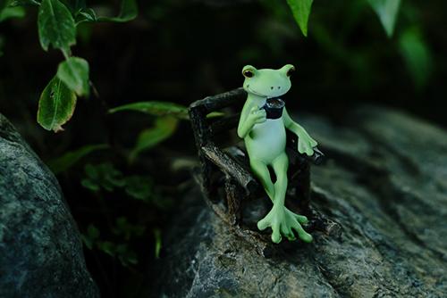 ツバキアキラが撮ったカエルのコポー。外で珈琲を楽しむコポタロウ。