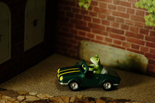 ツバキアキラが撮ったカエルのコポー。車庫入れに挑戦中のコポタロウ。