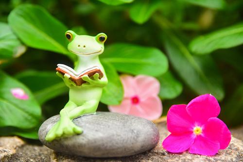 ツバキアキラが撮ったカエルのコポー。花の香りに包まれて、本を読むコポタロウ。